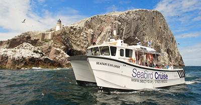 Seabird Centre boat trips